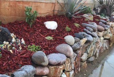 Give Your Yard A New Look And A Pop Of Color With